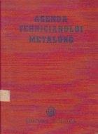 Agenda tehnicianului metalurg