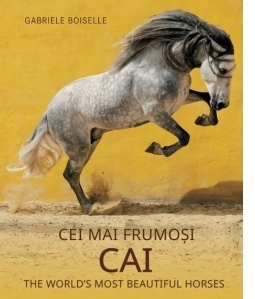 Album de arta - Cei mai frumosi cai. The world s most beautiful horses