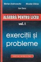 Algebra pentru liceu, Volumul I, Exercitii si probleme