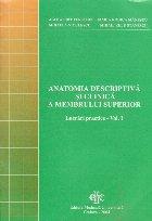 Anatomia descriptiva si clinica a membrului superior - Lucrari practice, Volumul I