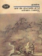 Anii de drumetie ai lui Wilhelm Meister sau Cei ce renunta, volumele I si II