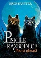 Cartea Pisicile Războinice Foc și