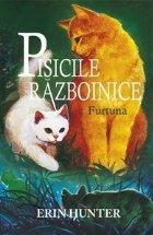 Cartea Pisicile Războinice Furtuna