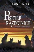 Cartea Pisicile Războinice Vremuri întunecate