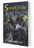 Cartea 8 Supraviețuitorii. În toiul nopții