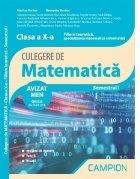 Culegere de matematica. Clasa a X-a. Semestrul I. Filiera teoretica, specializarea matematica-informatica
