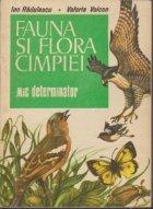 Fauna si flora cimpiei - Mic determinator