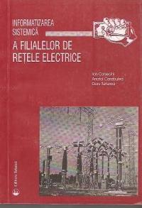 Informatizarea sistemica a filialelor de retele electrice