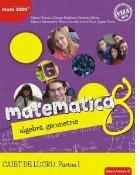 Matematica. Algebra, geometrie. Caiet de lucru. Clasa a 8-a. Consolidare. Partea I (editia a II-a)