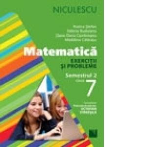 Matematica. Exercitii si probleme pentru clasa a VII-a, Semestrul 2 (Rozica Stefan)