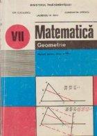 Matematica - Geometrie, Manual pentru clasa a VII-a