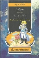 Micul Print The Little Prince