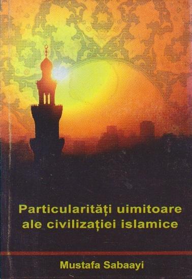 Particularitati uimitoare ale civilizatiei islamice