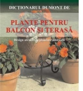 Plante pentru balcon si terase