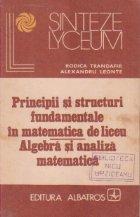 Principii si structuri fundamentale in matematica de liceu - Algebra si analiza matematica