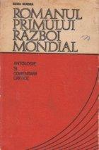 Romanul primului razboi mondial (Antologie si comentarii critice)