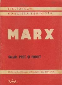 Salar, pret si profit
