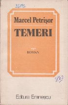 Temeri (roman)
